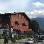 Hotel Pictures: Hotel Tourist, Fluelen