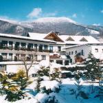 酒店图片: Alpenpension Birkenhof, Grünau im Almtal