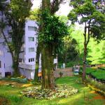 Oak Fields Munnar, Munnar
