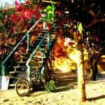 Hotel Pictures: Anda Di Hows Hostel, Placencia Village