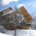 Hotel Pictures: The Vaujany Mountain Lodge, Vaujany