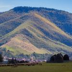 Picturesque Village in Transylvania, Răşinari