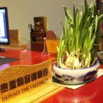 Xiaolazhe Hotel, Jianchuan