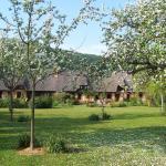 Hotel Pictures: Le Clos du Vivier, Valmont
