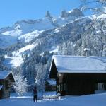 Fotos del hotel: Ferienwohnung Steber, Vandans
