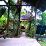 Hostal Camping La Y Griega,  Bocas Town