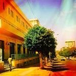 Hotel Pictures: Sunshine Hotel, Asmara