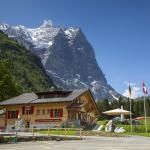 Hotel Pictures: Chalet-Hotel Schwarzwaldalp, Meiringen