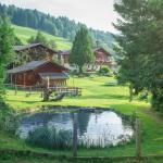 Bauernhof Auhof,  Wagrain