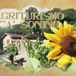 Agriturismo Cà Sonino, Bettola