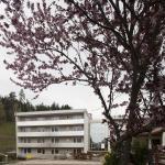 Hotel Pictures: Seminar- und Gästehaus Philippus, Feldkirchen in Kärnten