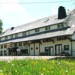 Hotel Pictures: Hotel Landgasthof Adler, Bernau im Schwarzwald