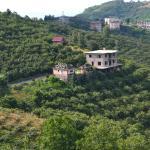 Köroğlu Köy Tesisi, Trabzon