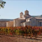 Hotel Pictures: Hotel Castilla Termal Monasterio de Valbuena, Valbuena de Duero