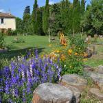 Hotel Pictures: Domaine de Buscail, Mazerolles-du-Razès