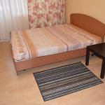Apartment na Baykalskoy 216,  Irkutsk