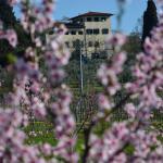 Agriturismo Il Frassine,  Rignano sull'Arno