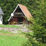 Holiday Home Petrovic, Mitrovac