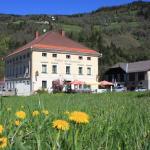 Hotellikuvia: Gasthof Steinerwirt, Predlitz