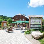 Hotel Pictures: Höhengasthaus Kolmenhof, Furtwangen