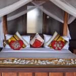 Tarangire Simba Lodge, Madege