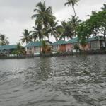 Riverine Resort,  Alleppey