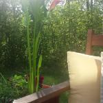 Hotel Pictures: The Calder House Bed & Breakfast, Steinbach