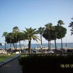 Fushia, Cannes