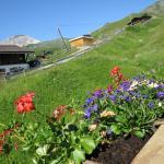 Hotel Pictures: Chli Alpa B13, Arosa