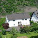 Hotel Pictures: Haus Flora - Ferienwohnungen, Cochem