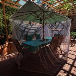 Hotel Pictures: La Maison de Papillon, Gaillac-d'Aveyron