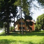 Mestni Hill Farm stay,  Ptuj