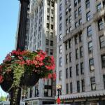The Pittsfield Hotel: Apartment + Suites,  Chicago