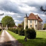 Hotel Pictures: Château de Saint Georges, Saint-Georges-sur-Moulon