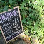 Hotel Pictures: Island Sunshine Youth Hostel, Xiamen