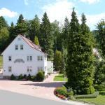 Hotel Pictures: Pension Rheingold Garni, Bad Grund