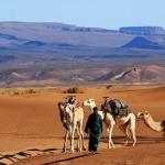 Bivouac Maroc Désert Zagora, Mhamid