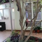 Kolibri Guest House, Adler