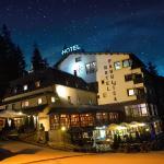 酒店图片: Hotel Pahuljica, Vlasic