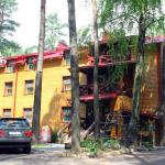 Hotel Pictures: Dudinka - City Hotel, Borisov