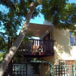 Syringa Tree Cottage, Knysna
