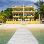 Villa Del Playa #4, Coconut Garden