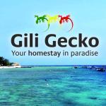 Gili Gecko,  Gili Trawangan