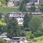 Hotel Pictures: Bergvital Hotel, Todtnauberg