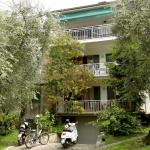 Large apartment in an olive trees garden,  Malcesine