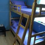 Chengdu Panda Baby Youth Hostel, Chengdu