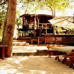 Off Beat Safaris Bush Lodge, Hoedspruit