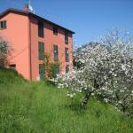 Agriturismo Casalino,  Beverino