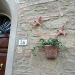 Casa Ricciardi, Chianni