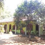 Regina Holiday Home, Tissamaharama